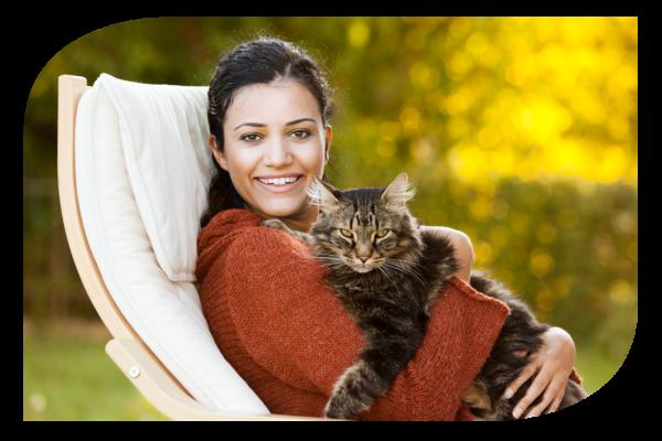 Pet food állateledel macskáknak